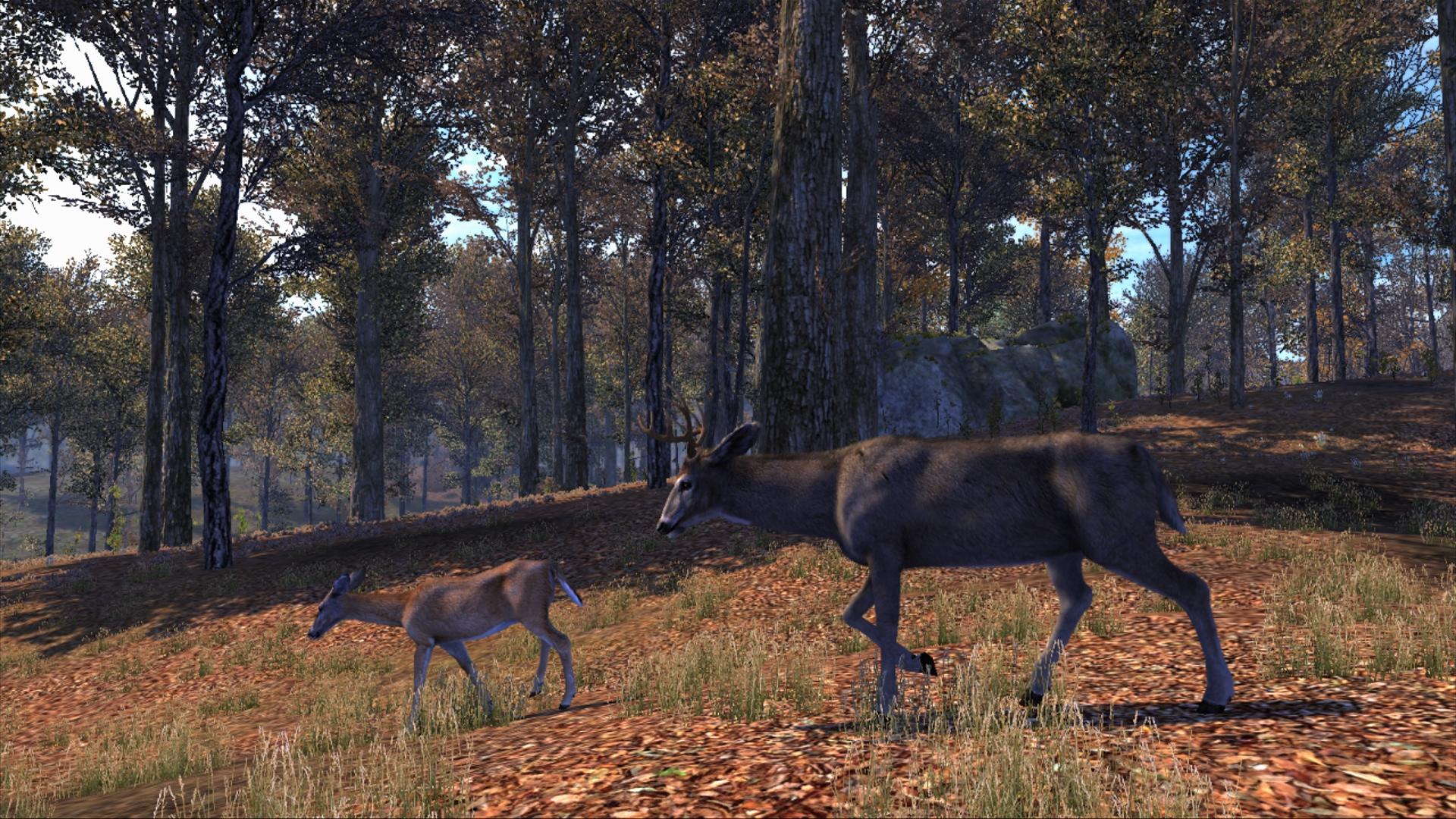cabelas big game hunter pro hunts 2014 gameplay pc download
